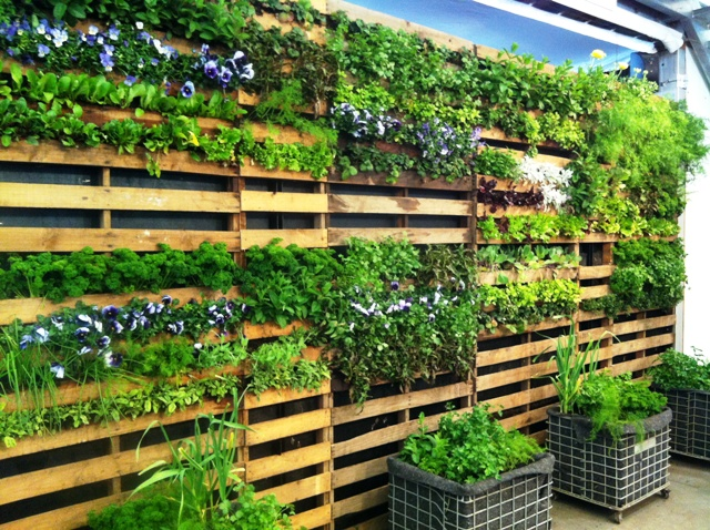 Vertical Planter Feature Wall Tdr Property Services
